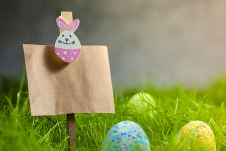 Colored Easter eggs in the grass next to Kraft paper topper decorated with an Easter bunny with space for text