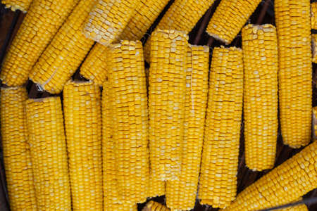 Many ears of yellow corn cooked on a large grill Zdjęcie Seryjne