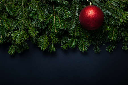 Red shiny ball on Christmas tree branches on a black background with place for text