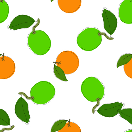 Texture with citrus fruits. Vector seamless pattern background with hand drawn limes and oranges in vintage style. On white. Use for textile, fabric, paper, web, page, wallpaper etc.