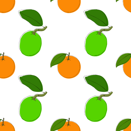 Vector seamless pattern background with hand drawn limes and oranges in vintage style. On white. Use for textile, fabric, paper, web, page, wallpaper, etc.