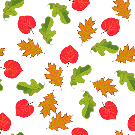 Seamless pattern with hand drawn leaves on white background. Oak, linden, hazel