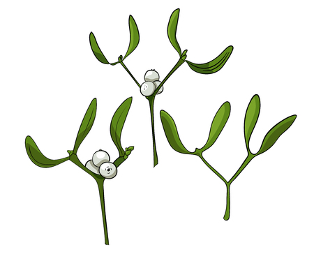 Three color mistletoes. Christmas hand drawn illustration. Can be used as a greeting card, poster or print.