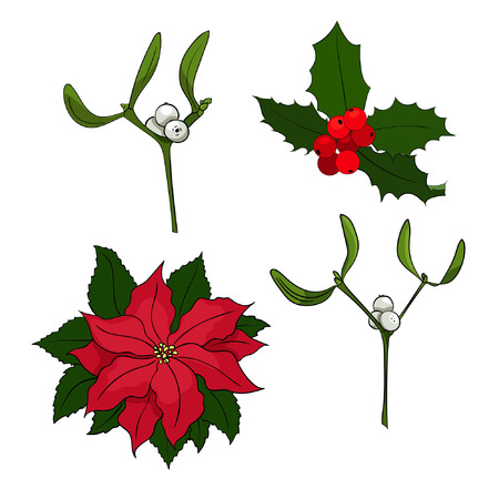 Four vector Christmas elements for your designs. Poinsettia, holly berry, mistletoe.
