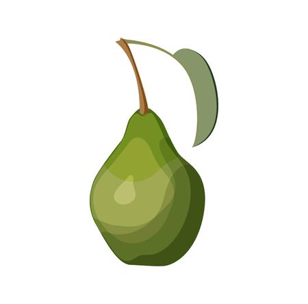 Green pear on white background vector illustration Ilustração