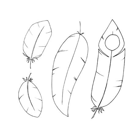 hand drawn feathers set Ilustração