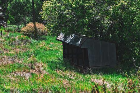 コロラド州 写真素材