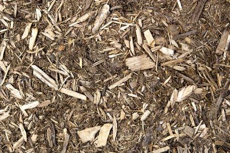 bark mulch: Landscaping Mulch Close Up
