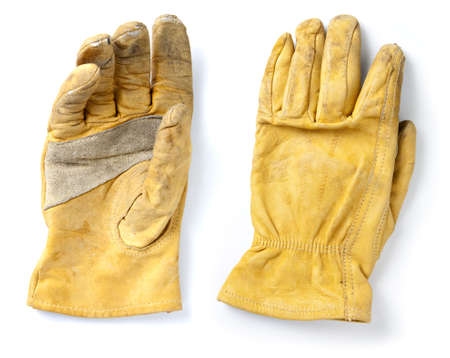 protective: Construction Leather Protective Gloves. Clear focus acorss entire glove surface.