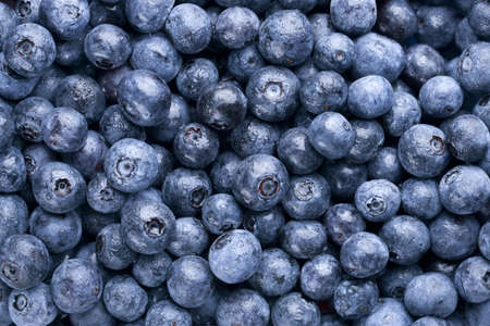 Fresh washed blueberry background. Focus across top layer of berries. Imagens
