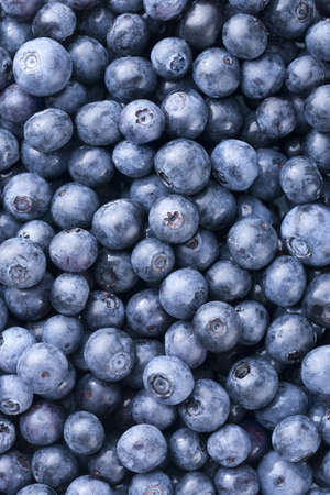 Blueberries filling entire frame. Critical focus on one layer of top blueberries. Archivio Fotografico