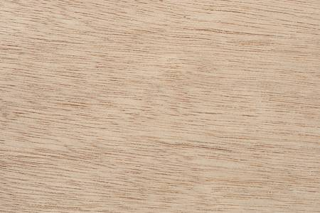 Wood plank of raw oak extreme close up. Focus across entire surface.