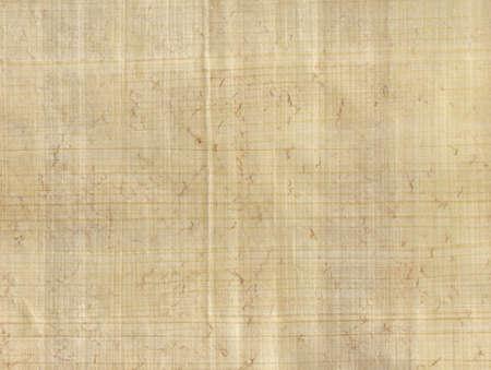 パピルス パーチメント紙のクローズ アップ。全体の表面を横切って集中します。