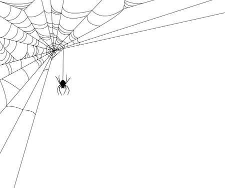 Spiderweb op wit  Stock Illustratie
