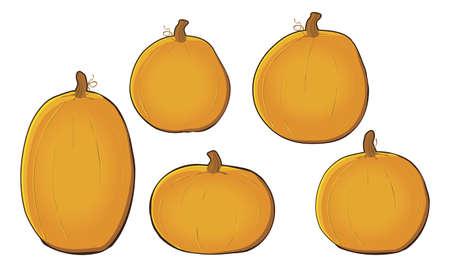 Pumpkins Çizim