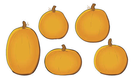 Pumpkins Vettoriali