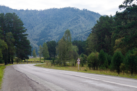 altai: country road among the Altai Mountains