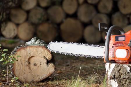 Chainsaw photo