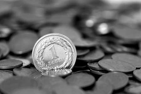 Money PLN photo