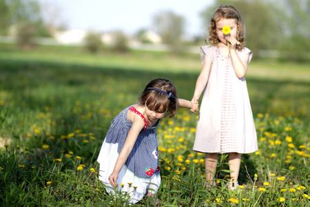 Two girls gathering flowers in a meadow photo
