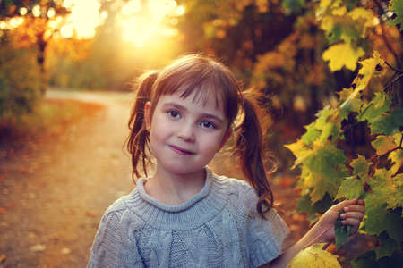 happy and smiling girl in braids in the autumn afternoon photo