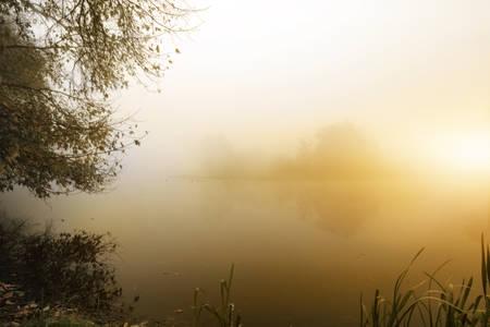 Foggy morning at a small lake photo