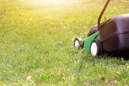 lawn mower: electric lawn mower on a green grass