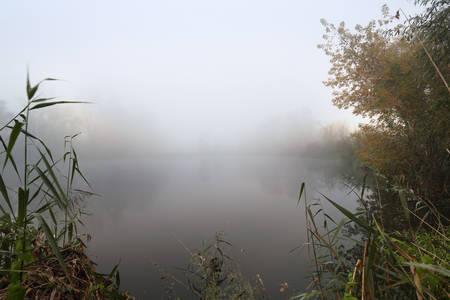 Lake and the foggy morning photo