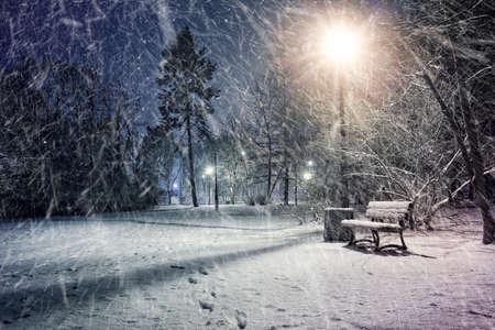 windy city: Winter wonderland evening in a park