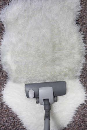 saprophyte: vacuuming  carpet