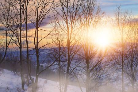 mistige winterochtend in een prachtig gebied