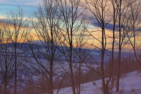 Zonnige winterochtend in een prachtig gebied