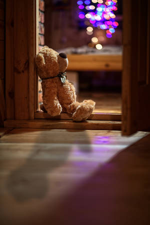 plush teddy bear sitting alone on Christmas Eve time