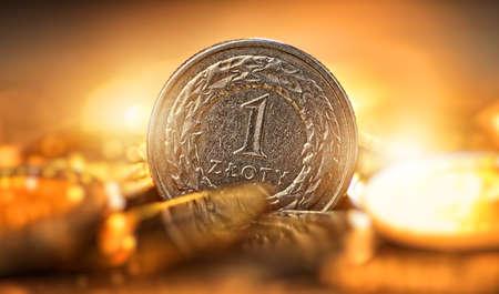 Polish currency - one zloty coin Reklamní fotografie
