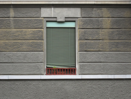 closed window with a small aperture and a small plant