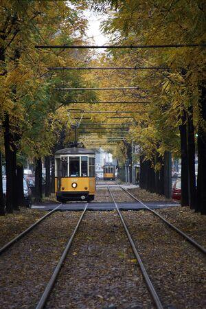 Milan, İtalya, 25 Ekim 2012, sarı ağaçların altında Milan Sarı tramvay