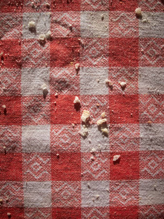 crumbs: Bread crumbs on the typical red and white checkered tablecloths