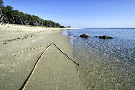 ビーチの休日休日概念として海方向