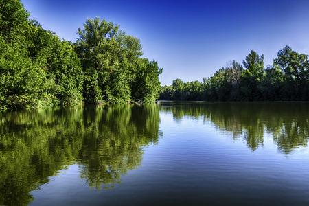 美しい景観、青い空の下で湖の水で木の反射
