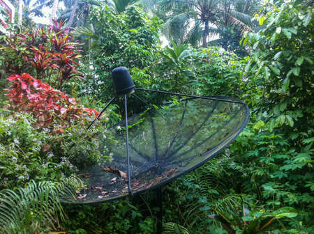 Communication technologies in a hard-to-reach place. A parabolic satellite dish in the jungle. Satellite TV in rural areas