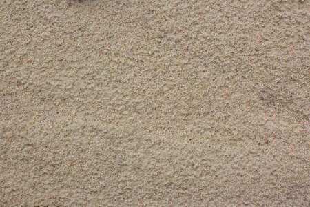 Close-up of smooth sand at a beach texture background. Full frame shot of sand area on the beach. Top view of sandy beach. Background with copy space and visible sand texture.