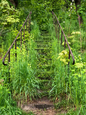 An old metal staircase in a wooded garden, a tourist path. Fresh green branches over the path. The rusty staircase was overgrown with bare branches of bushes and trees.
