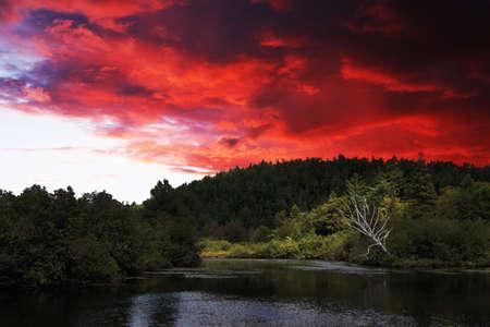 Herbst Herz, Bild auf Angrinion Park in Montreal, Quebec, Kanada. Standard-Bild - 3920752