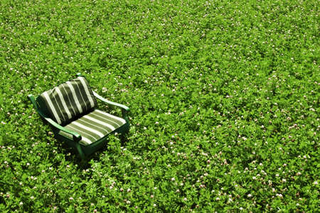 Green chair in the field