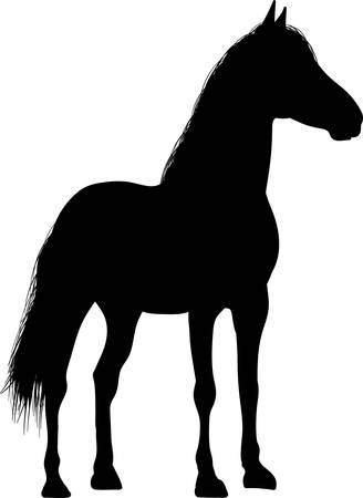 Drawing the black silhouette of standing horse on a white background