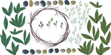 Set of vector pictures with round wreath, olive leaves and olives of different colors for creating wreath Ilustração