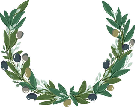 vector drawings of round wreath with olive leaves and olives of different colors Illustration
