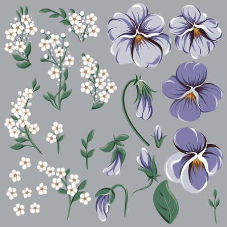 Set for creating floral frame with viola flowers 写真素材