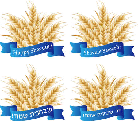 Jewish holiday of Shavuot, wheat ears, greeting