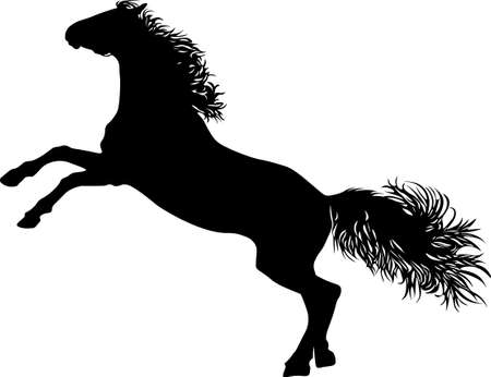 Drawing the black silhouette of standing horse